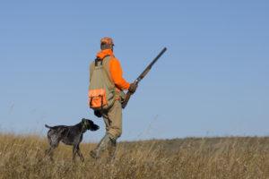 Hunting trip
