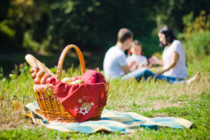 family out on a picnic
